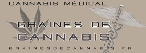 Graines pour faire pousser le cannabis médical