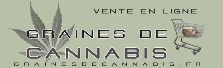 Acheter des graines de cannabis en ligne